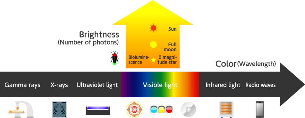 State of light | Nature of light | Photon terrace
